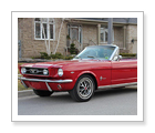 Mustang Convertible Driving Experience - Thornhill - $299