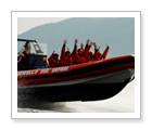 Sea Safari Eco-Tour - West Vancouver BC - $299